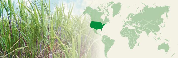 Naturkost USA Inc.